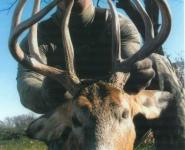 2005-itb-bucks-7