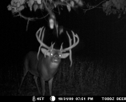 2009-itb-bucks-16