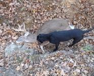 2010-itb-bucks-3