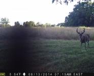 2011-itb-bucks-40