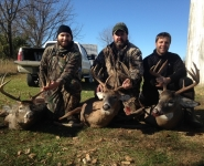 2013-itb-bucks-12