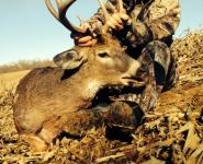 2013-itb-bucks-9