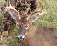 2014-itb-bucks-36