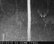 2016-itb-bucks-17